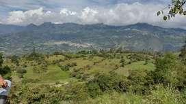 Se vende hermosa finca en Choachí Cundinamarca