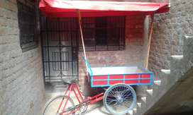 Triciclo de carga con techo