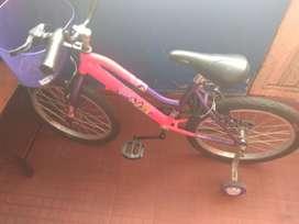 Vendo Bicicleta Niña en Buen Estado