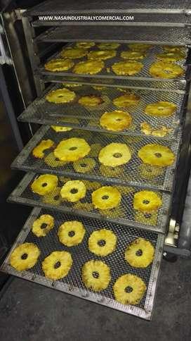 hornos deshidratadores industriales profesionales