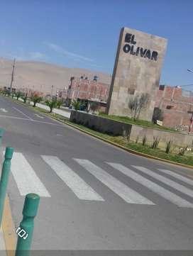 Se vende por ocación, terreno de 102 Km2 /17 x 6 _ El Olivar
