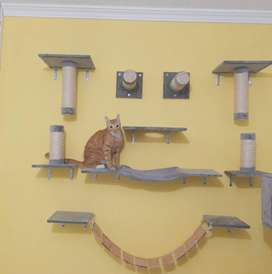 Gimnasio de pared para gatos