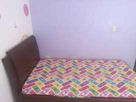 Vendo cama sencilla en madera