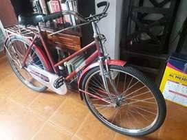 Bicicleta inglesa Eastman. Puedo despacharla al interior