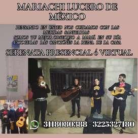 Mariachi Lucero de México en Cúcuta
