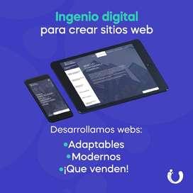 Diseñamos tiendas online profesionales