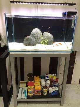Pecera acuario con mesa