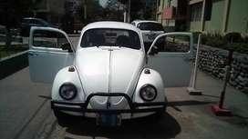Escarabajo 1974 clásico.
