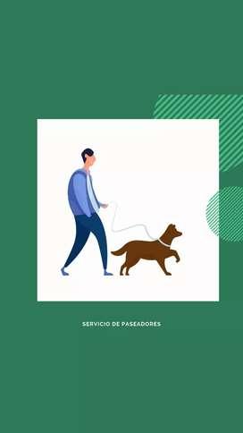 Servicios de paseadores