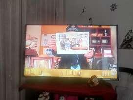TV 49 PULGAS SMAR TV MÁRCA LG