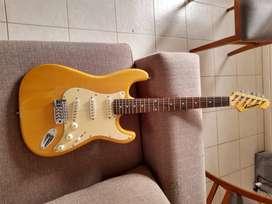 Guitarra Anderson Stratocaster