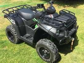 Kawasaki brute force 300cc
