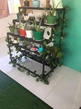Mueble para plantas o vivero en casa