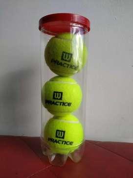 Pelotas tenis Wilson practice