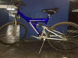 Bicicleta Lusitana