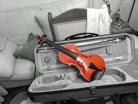 Clases de Violin Personalizadas en Rosario o por Skype