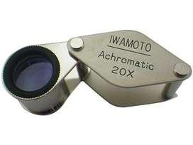 Lupa Iwamoto