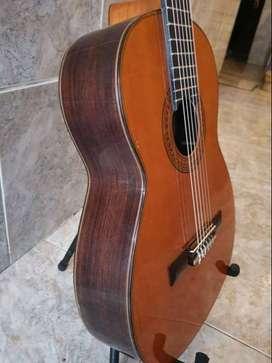 Guitarra de concierto, Guitarra flamenca - España - 1950