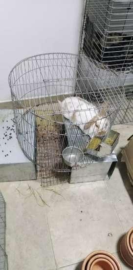 Venta de jaulas de conejo