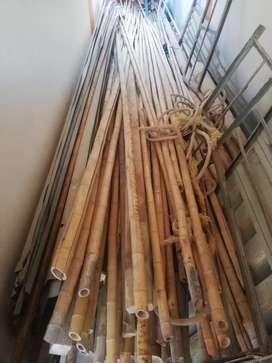 Cañas de bambu