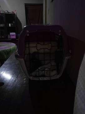 Transportador para Mascotas