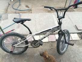 BMX marca Lion
