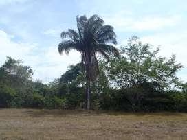 Vendo Finca en Valle de San Juan Tolima