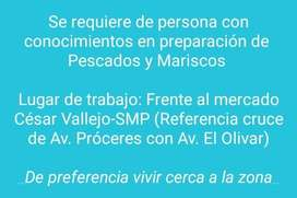 OFERTA DE TRABAJO-SAN MARTIN DE PORRES,LIMA