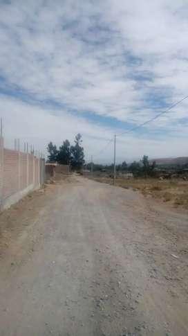 Terreno characato 300 mts