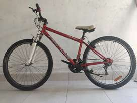 Bicicleta Xbikers