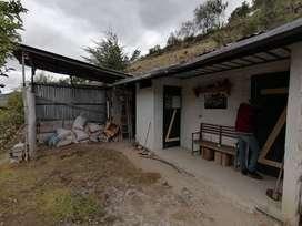 Vendo terreno de 3000 m2, con casa y huerta de frutales ya en producción en Paute