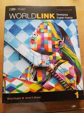 World Link One