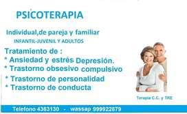PSICOTERAPIA  Y TERAPIA  DE PAREJA