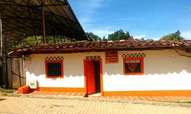 Casa Palermo Támesis