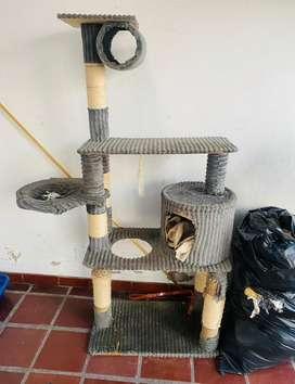 Gimnasio de Gato