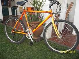 Bicicleta rodado 26 -