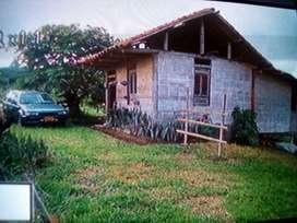VENDO PARCELA CAMESTRE  3 KMT ALCALA valle Carlos.