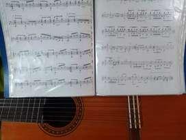 Toca  guitarra & aprende canto, clases online