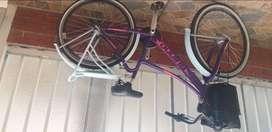 Bicicleta playera  motivo viajé