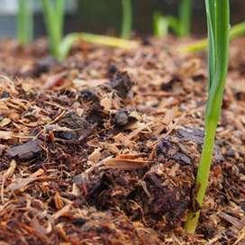 Mantillo O Mulching - Sustrato Para Cultivo X 10 Libras
