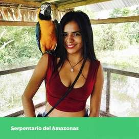 Tour Iquitos oso perezoso, anaconda , lagartos