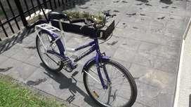 Bicicleta de dama de paseo rodado 26
