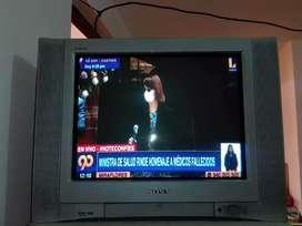 """Televisor sony 21"""""""
