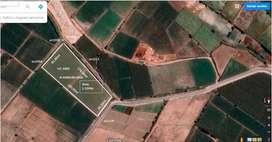 Terreno Agricola en Punta de Bombon