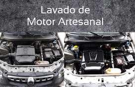 Lavado de Motor Artesanal  sin Hidro