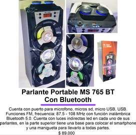 Parlante Portable MS 765 BT Con Bluetooth
