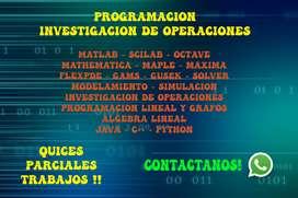 METODOS NUMERICOS MATLAB PROGRAMACION SIMULACIO PYTHON PROGRAMACION LINEAL INVESTIGACION DE OPERACIONES GAMS GUSEK
