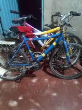 Vendo cicla