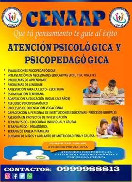 Centro psicopedagógico y psicológico CENAAP