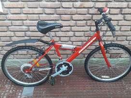Bicicleta Hopi Skinred Rodado 26